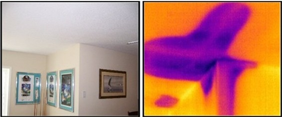 infrared detects wet ceiling